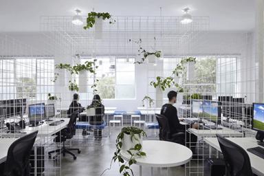Cây xanh tạo không gian mát mẻ, giảm stress trong công việc