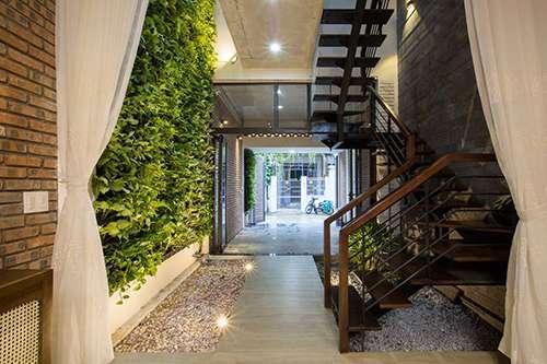 Khu vườn thẳng đứng nằm trong nhà